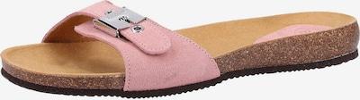 SCHOLL Pantoletten in rosé, Produktansicht