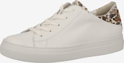 Paul Green Sneakers laag in de kleur Gemengde kleuren / Wit, Productweergave