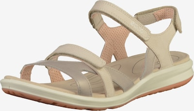 ECCO Trekking sandal 'Cruise II' in Champagne / Silver grey, Item view