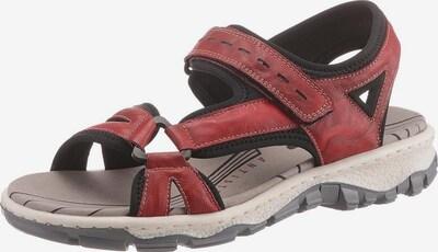 RIEKER Sandale in blutrot / schwarz, Produktansicht