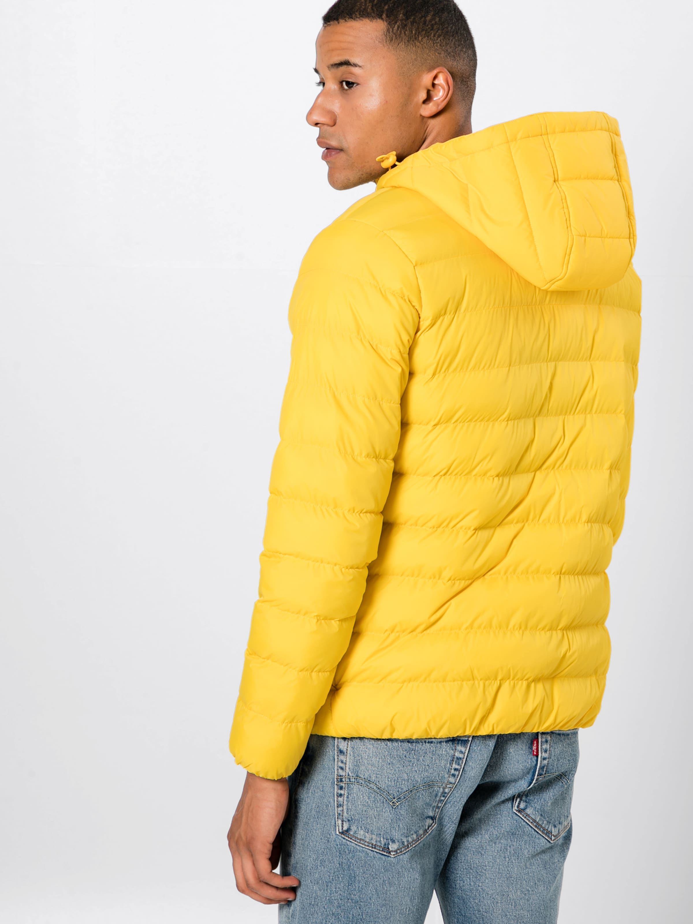 Steppjacke Urban Bubble' In Gelb 'basic Classics EWQrCxBedo