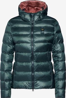 USA Jacken bei Blauer kaufen YOU jetzt online ABOUT eDW2IYH9Eb