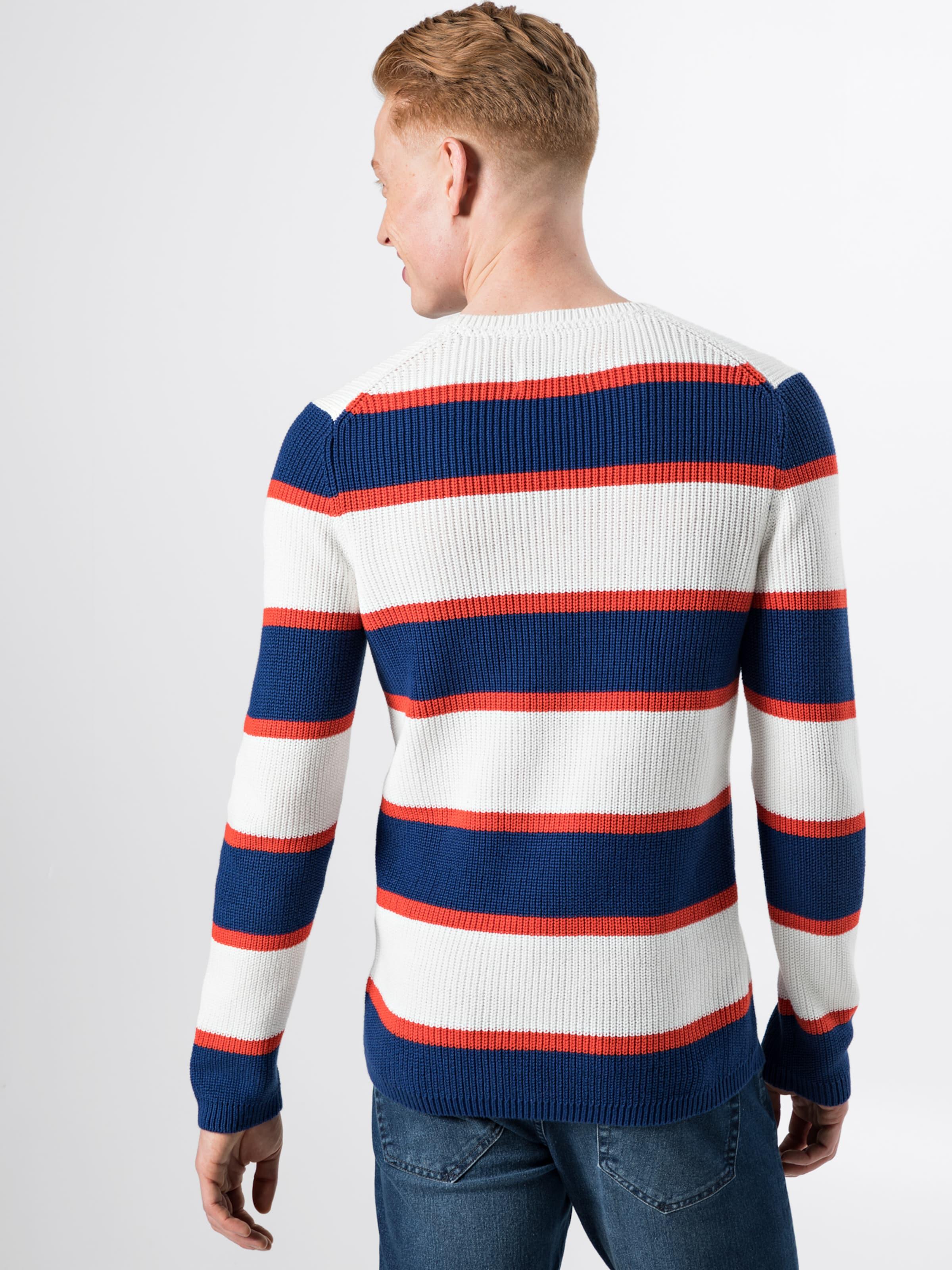Denim Blanc Tailor Pull Tom Bleu En over FoncéRouge QrdBthxCso