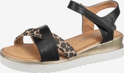 Laufsteg München Sandale in beige / braun / kastanienbraun / schwarz, Produktansicht