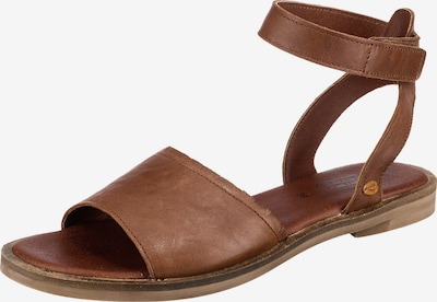CAMEL ACTIVE Sandalen 'Heat 72' in braun, Produktansicht
