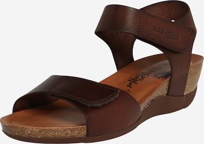 COSMOS COMFORT Sandále - tmavohnedá, Produkt