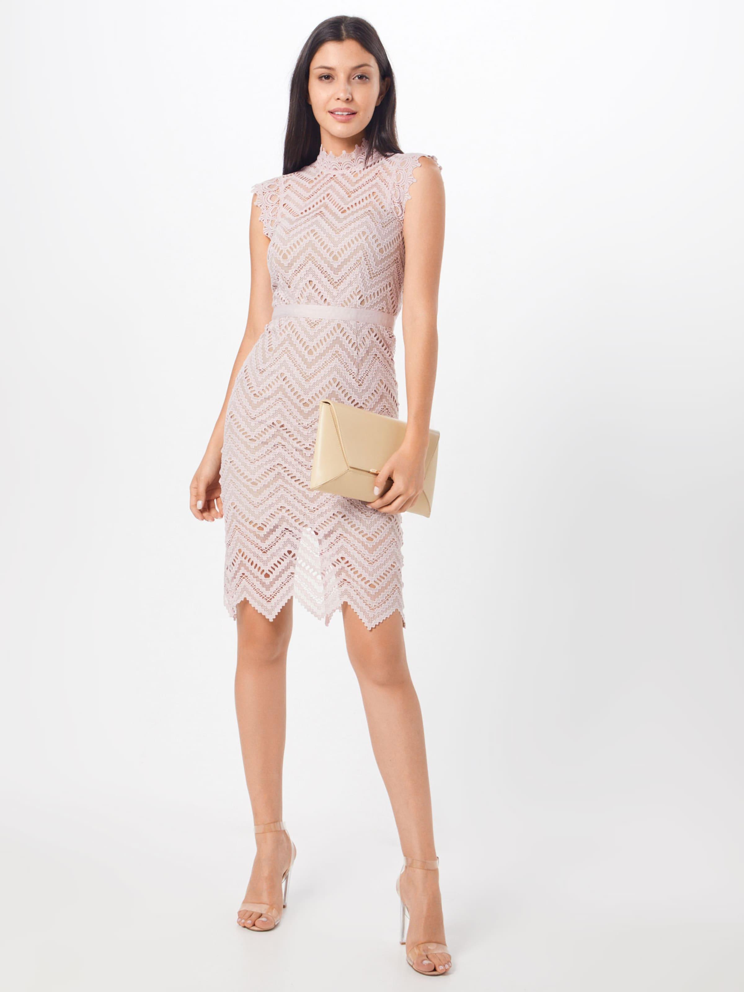 Lace Pink Kleid Dress' In 'imogen Bardot yYb7gf6