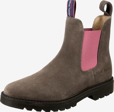 Blue Heeler Chelsea Boots in grau / rosé, Produktansicht