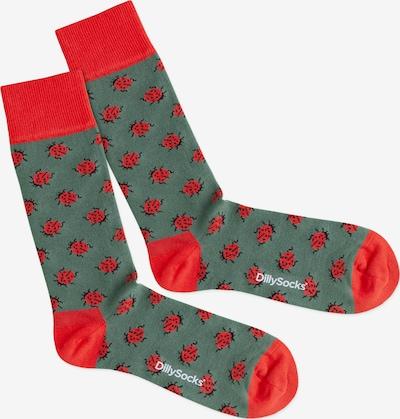 DillySocks Socken 'Forest Bug' in grün / rot, Produktansicht