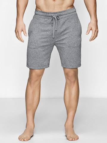 JBS OF DENMARK Trousers in Grey
