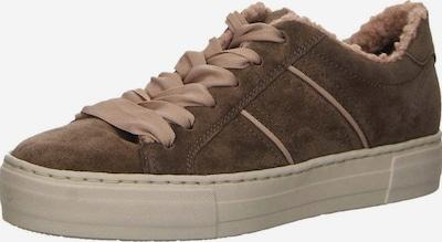 SALAMANDER Sneakers in dunkelbeige, Produktansicht