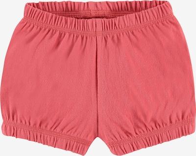 IMPS&ELFS Shorts ' Sanddrif ' in pink, Produktansicht