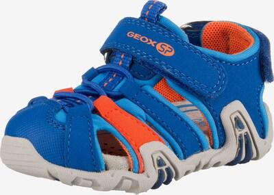 GEOX Sandale 'Kraze' in blau / koralle, Produktansicht