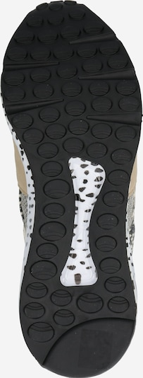 STEVE MADDEN Sneaker in beige: Ansicht von unten