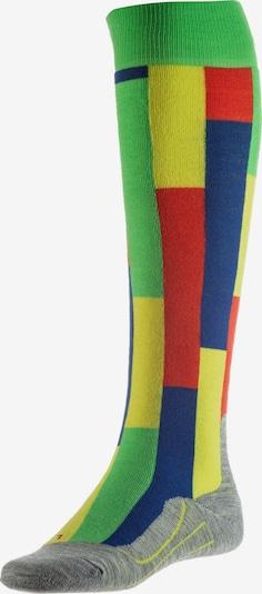 FALKE Skisocken 'SK4 Brick' in blau / gelb / grün / rot, Produktansicht