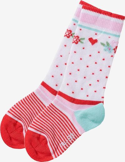 BONDI Kniestrümpfe in türkis / rosa / rot, Produktansicht