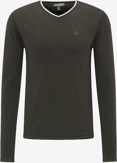 DREIMASTER Pullover in grün: Frontalansicht