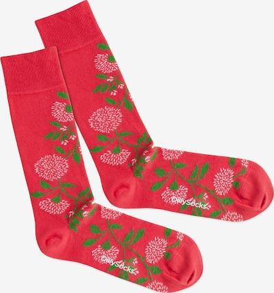 Șosete 'Botanical Passion' DillySocks pe verde / roz, Vizualizare produs