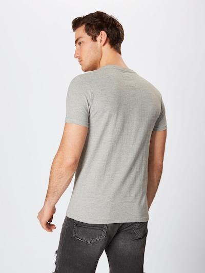 Superdry T-Shirt in grau / orange / weiß: Rückansicht
