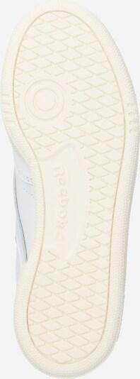 Reebok Classic Sneaker 'Club C 85' in hellgrau / weiß: Ansicht von unten