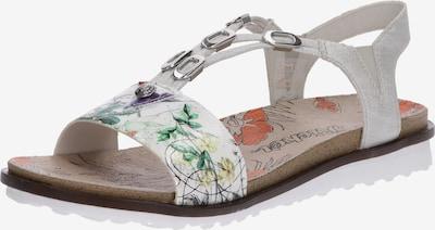 RIEKER Sandalen met riem in de kleur Geel / Groen / Wit: Vooraanzicht