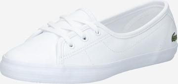 LACOSTE Tennised, värv valge