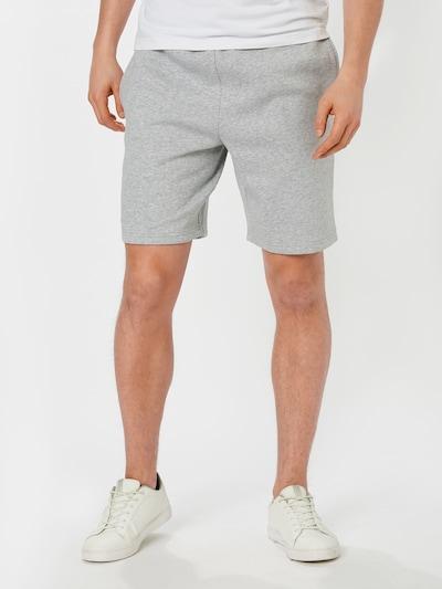 LACOSTE Shorts in hellgrau / grün: Frontalansicht