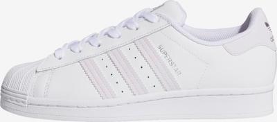 ADIDAS ORIGINALS Sneakers 'Superstar' in Purple / White, Item view