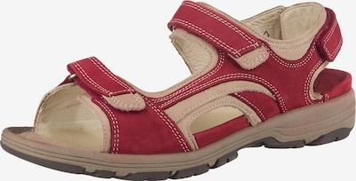 WALDLÄUFER Outdoorsandale 'Herki' in hellbeige / rot, Produktansicht