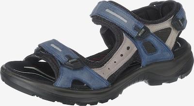 ECCO Sandalen in royalblau / grau / schwarz, Produktansicht