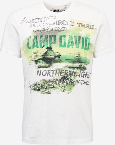 CAMP DAVID T-Shirt in anthrazit / grün / weiß, Produktansicht