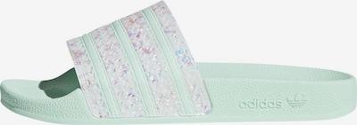 ADIDAS ORIGINALS Šľapky - mätová / biela, Produkt