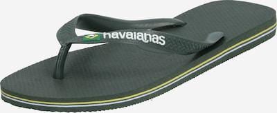 HAVAIANAS Sandalias de dedo 'BRASIL' en oliva, Vista del producto