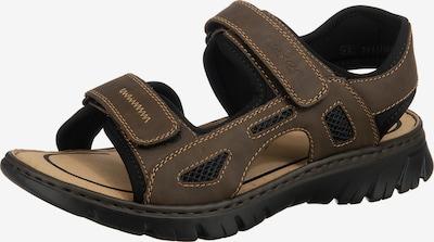 RIEKER Sandalen in braun / schwarz, Produktansicht