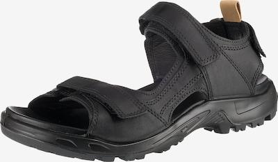 ECCO Sandalen in schwarz, Produktansicht