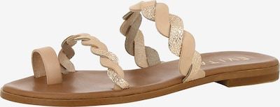EVITA Sandale 'Olimpia' in nude / silber, Produktansicht