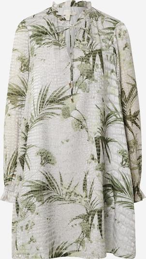 Ted Baker Šaty 'Glimmah' - krémová / mátová, Produkt