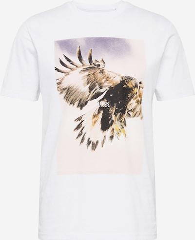 BOSS Majica 'Tomio 4' | mešane barve / bela barva, Prikaz izdelka