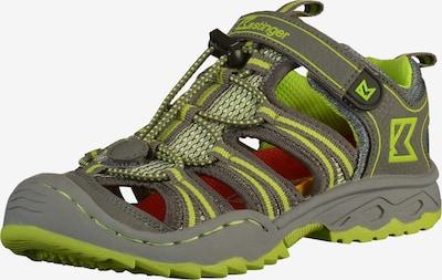 Kastinger Sandalen in de kleur Grijs / Neongroen, Productweergave