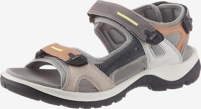 ECCO Sandale in hellbraun / grau / graphit, Produktansicht