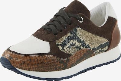 heine Sneaker low i beige / brun / sort / hvid, Produktvisning