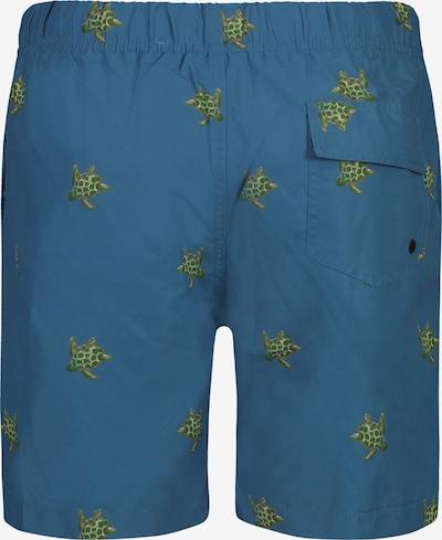 Shiwi Kąpielówki 'Turtle' w kolorze niebieskim: Widok od tyłu