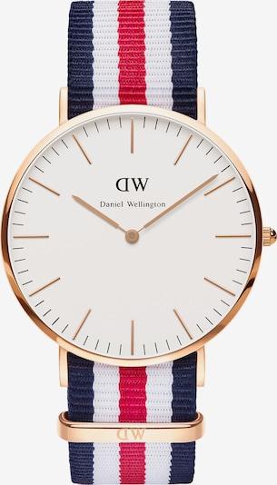 Daniel Wellington Uhr in dunkelblau / rosegold / cranberry / weiß, Produktansicht