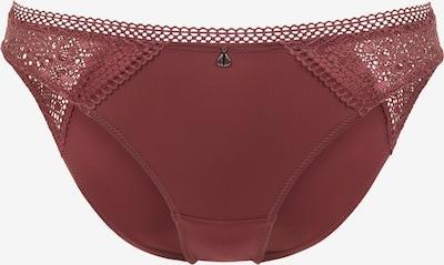 PALMERS Slip 'Extraverted Lace Minislip' in de kleur Pruim, Productweergave