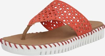 Flip-flops 'SEPULVEDA - LARKSPUR' SKECHERS pe roșu, Vizualizare produs