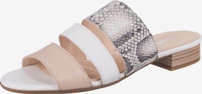 GABOR Pantolette in beige / dunkelgrau / altrosa / weiß, Produktansicht