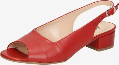 SIOUX Sandale 'Zippora' in rot, Produktansicht
