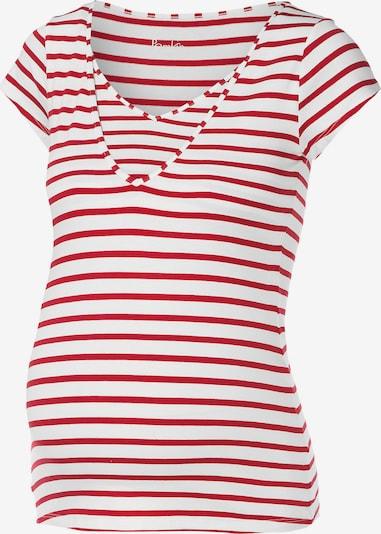 POMKIN Shirt 'Lise' in feuerrot / weiß, Produktansicht
