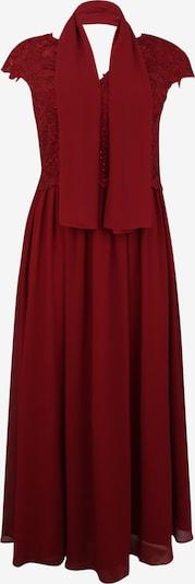 My Mascara Curves Sukienka koktajlowa 'SLEEVE LACE' w kolorze czerwone winom, Podgląd produktu
