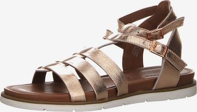 SALAMANDER Sandale in gold, Produktansicht